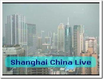 Shanghai live